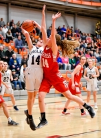 Gallery: Girls Basketball Snohomish @ Arlington